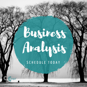 Business analysis package